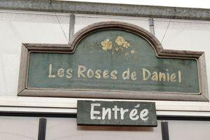 Taille des rosiers avec Daniel Schmitz :  ce que je ne dois pas oublier
