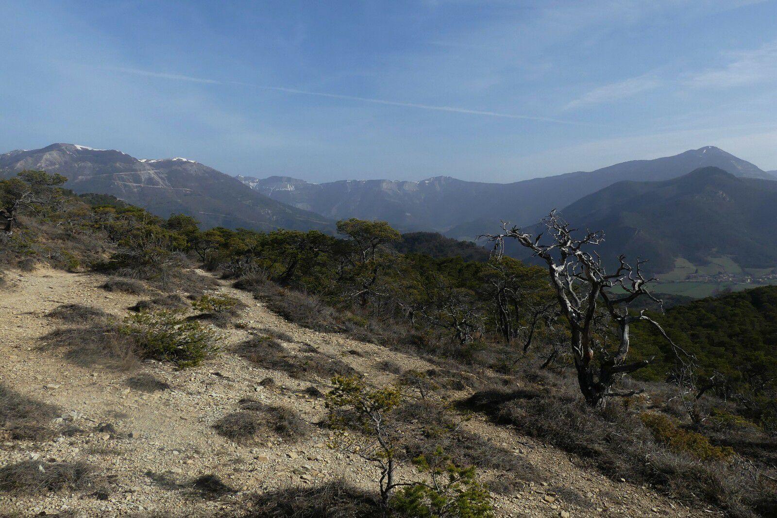 Tour et sommet du Taillefer...... de la Drôme (932m)