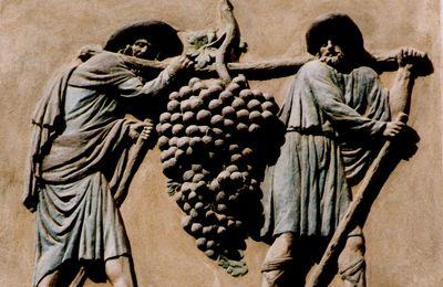 La grappe de Canaan étiquetée