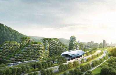 La Chine a commencé la construction de la première ville-forêt du monde