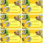 Etiquettes confiture d'ananas