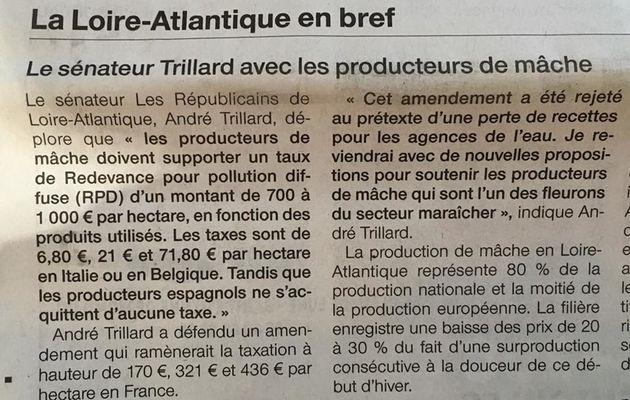 22 janvier 2016 : Le sénateur André Trillard soutient les producteurs de mâche