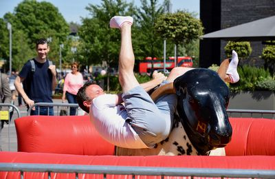 What Is a Mechanical Bull Rental?
