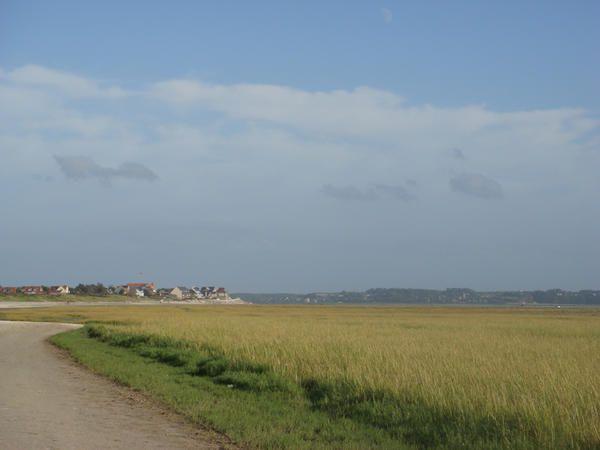 Voici quelques photos prises ça et là au gré de mes vacances,de la Baie de Somme, à Oxford, à Aigues-Mortes... ou en Allemagne