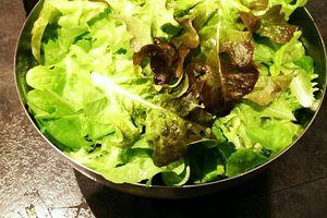 Salade : encore une récolte le 20 novembre