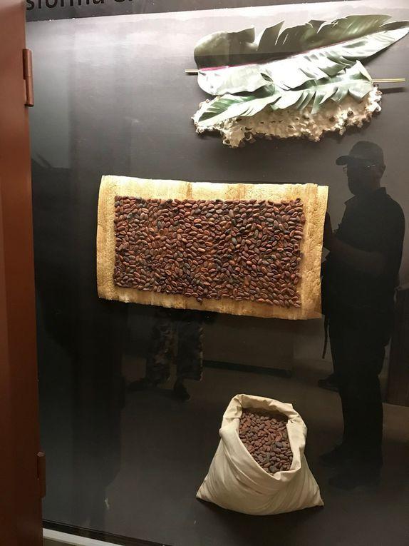 SMESP19 HEALTH CHOCOLATE MUSEUM