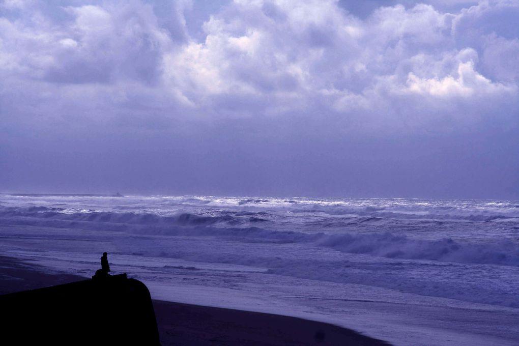 Album - ocean
