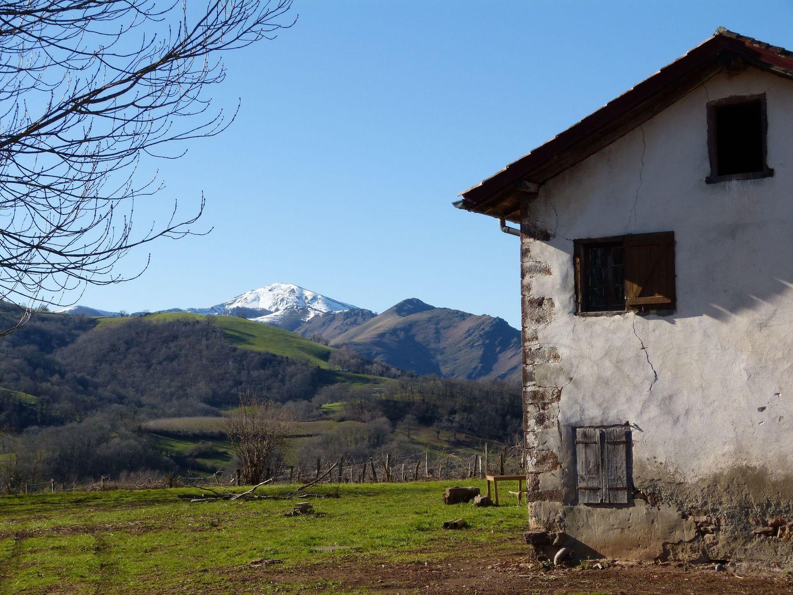 Balade près d'Irouléguy