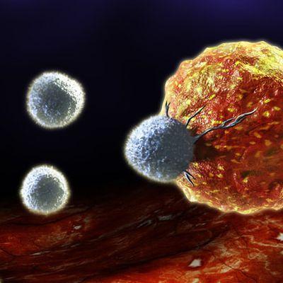 cancer, les thérapeutiques ciblées