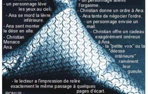 50 SHADES OF GAME, le jeu (presque) officiel !