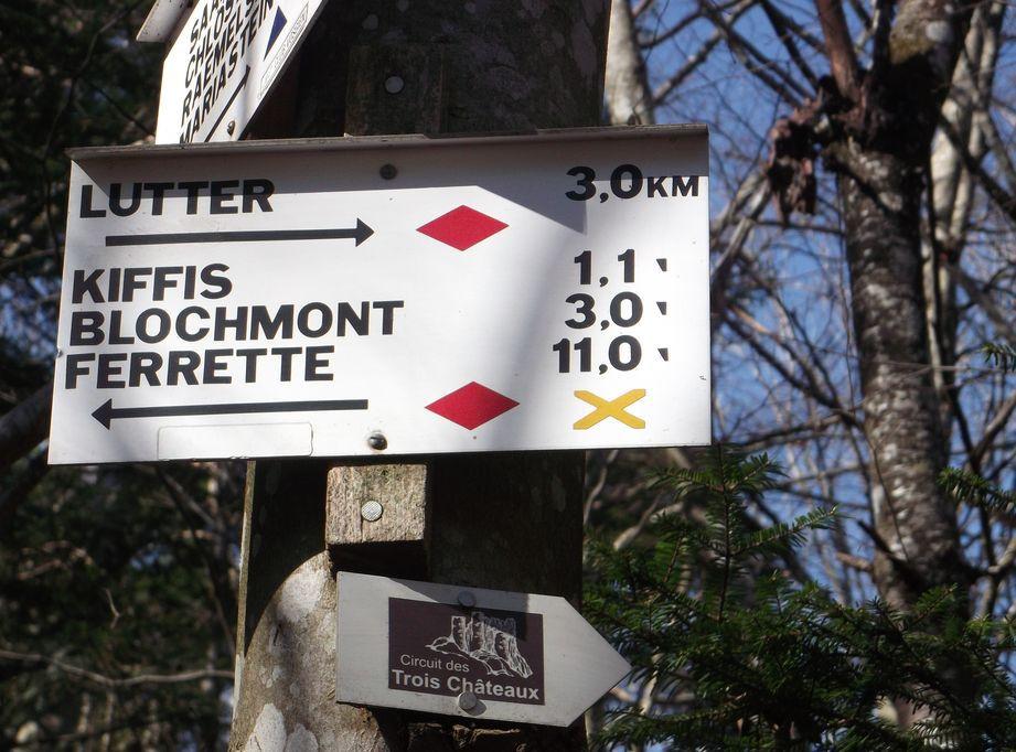 SONDERSDORF : LE SUNDGAU SUBLIME ET SES CROIX (R 393)  17,2 km - D+483 m - 5 h - 4/6