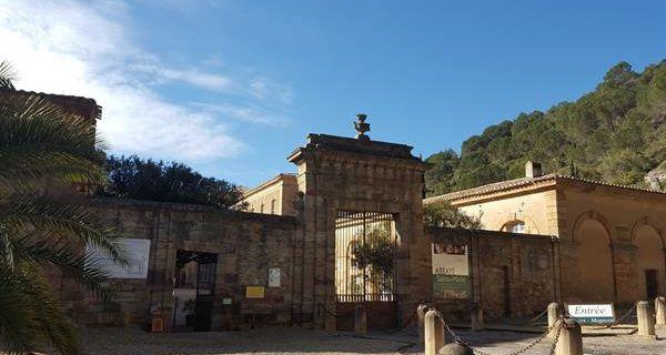Lagrasse (Visite de l'Abbaye de Sainte Marie d'Orbieu) - Duilhac sous Peyrepertuse