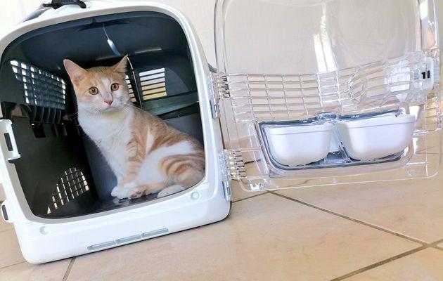 Pixel découvre la cage de transport multifonctionnelle Cabrio de Catit