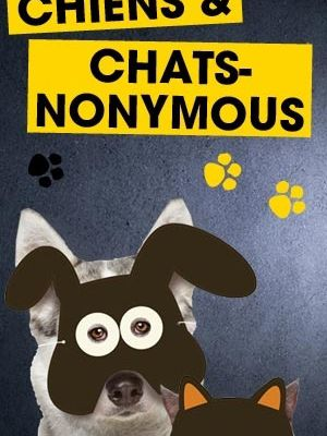 Chiens & chats l'Expo !