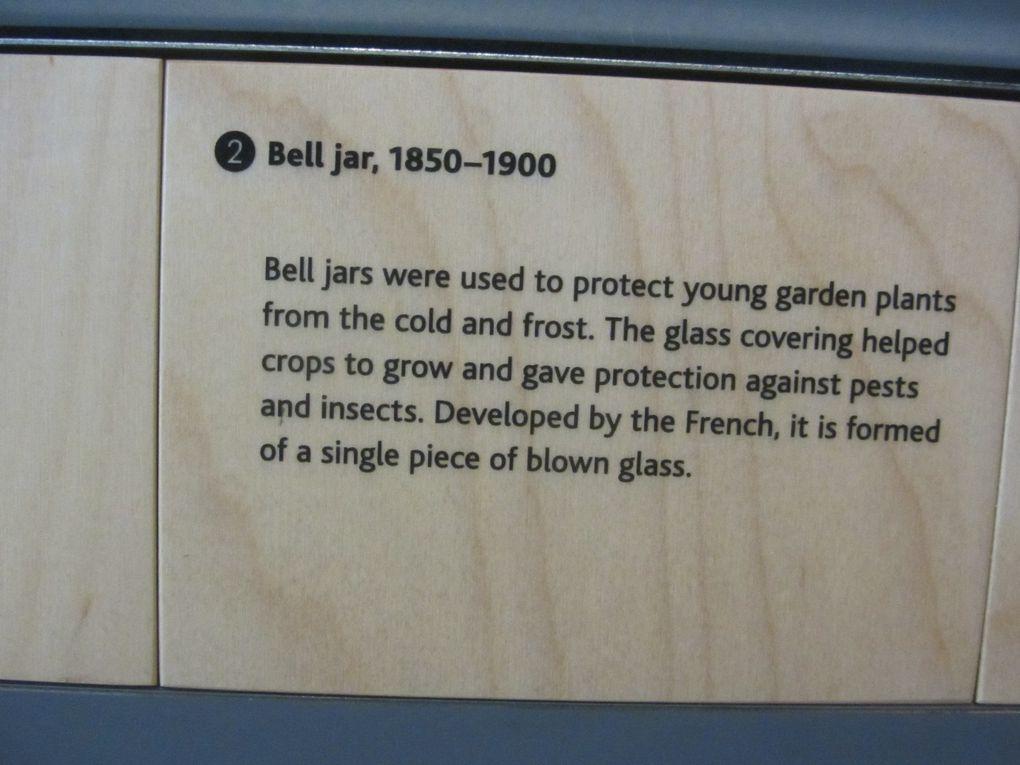 De très belles cloches de verre pour protéger les plantations du froid et du gel. Quand au chat, c'est une création de jardinier, pour protéger les semis de l'attaque des oiseaux.
