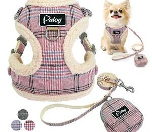 Entangle your pet dog lovingly with harness