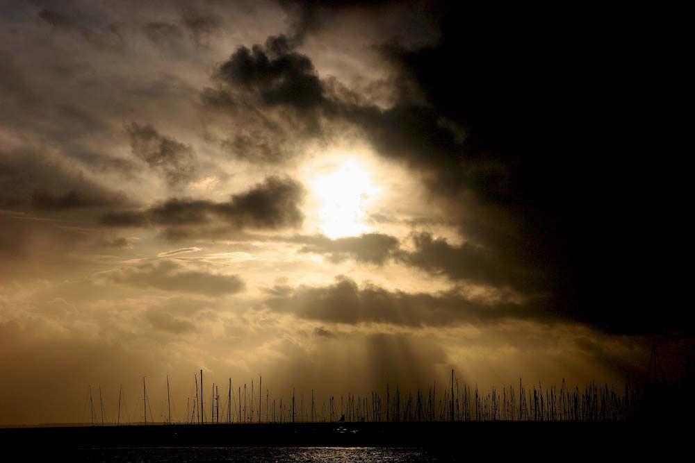 Album - Promenade en Pays de Retz
