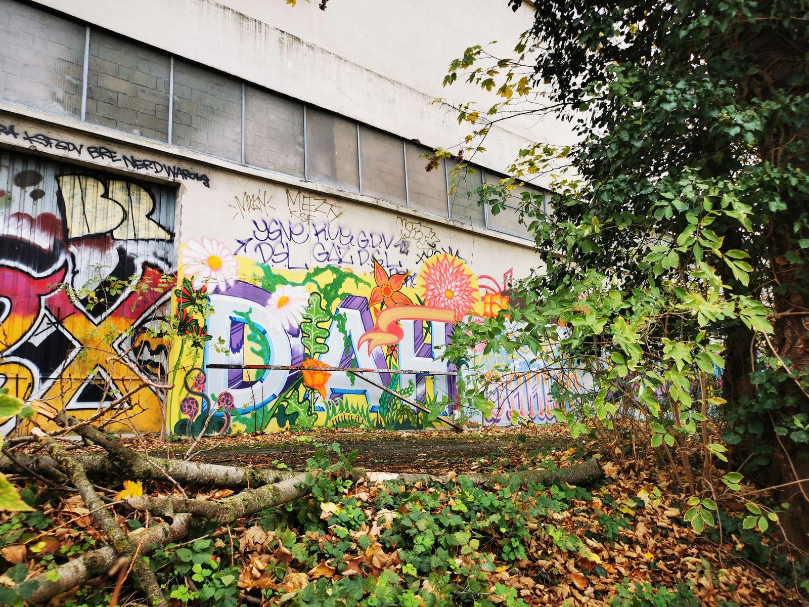 Street art à lîle-Saint-Denis