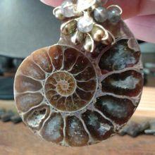 Boucles d'oreilles clips en ammonites. Paris création.