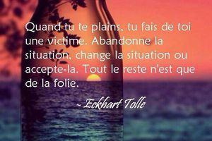Eckhart Tollé - 15 Citations