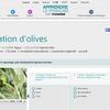 """A2-B1: Activité sur la cueillette des olives sur """"Epicerie fine"""""""