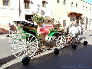 Marrakech( Maroc en camping-car)