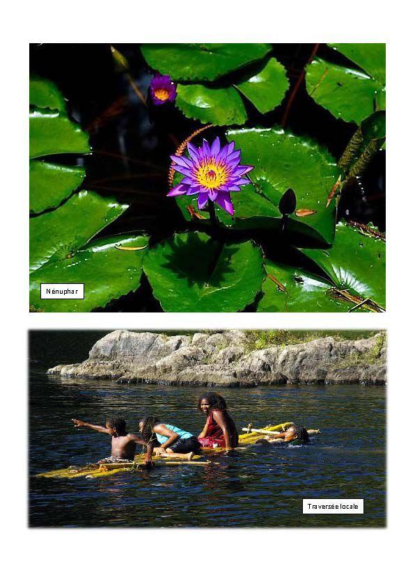 Nouvelle-Calédonie histoire, géographie et photographie Episode 4