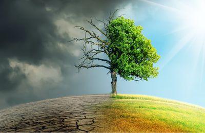 L'État sommé de s'expliquer sur ses engagements climatiques