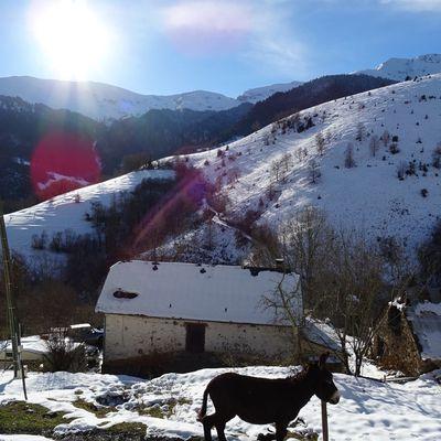 Une maison en montagne