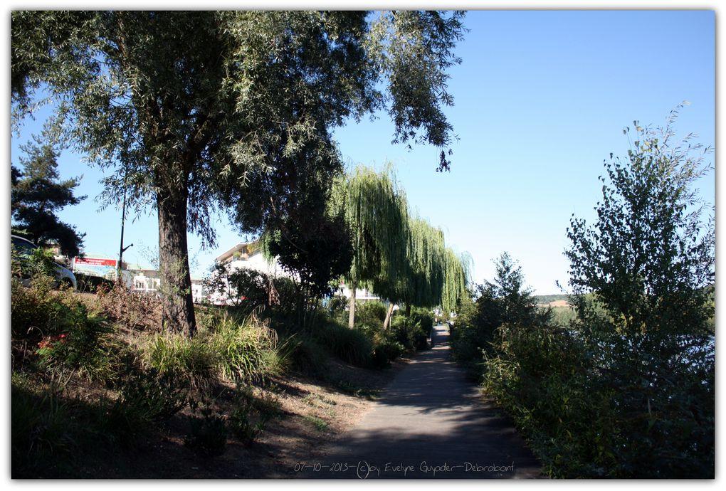 ... Et si vous vous voulez profiter un jour de ce paysage juste en bas de chez vous, la dernière tranche de la résidence devrait bientôt démarrer ! J'ai fait ces quelques photos en rentrant..