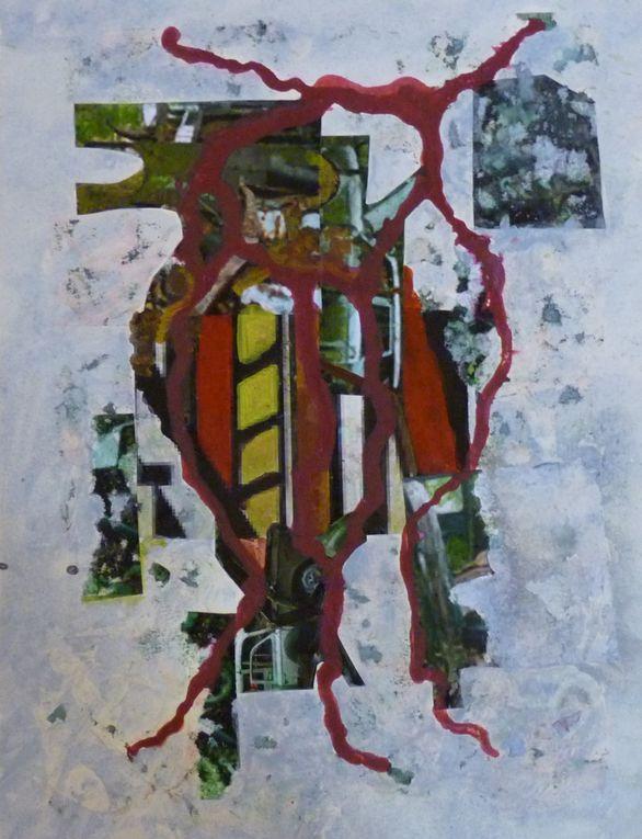 Album.8. Grande-serre-des-curiosites