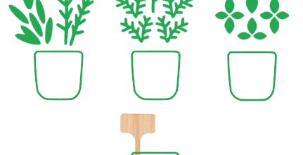 Fan d'herbes aromatiques ?