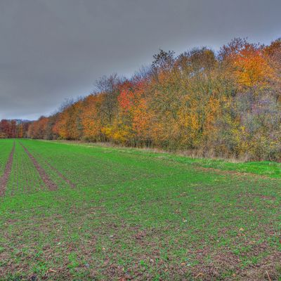 Herbst HDR