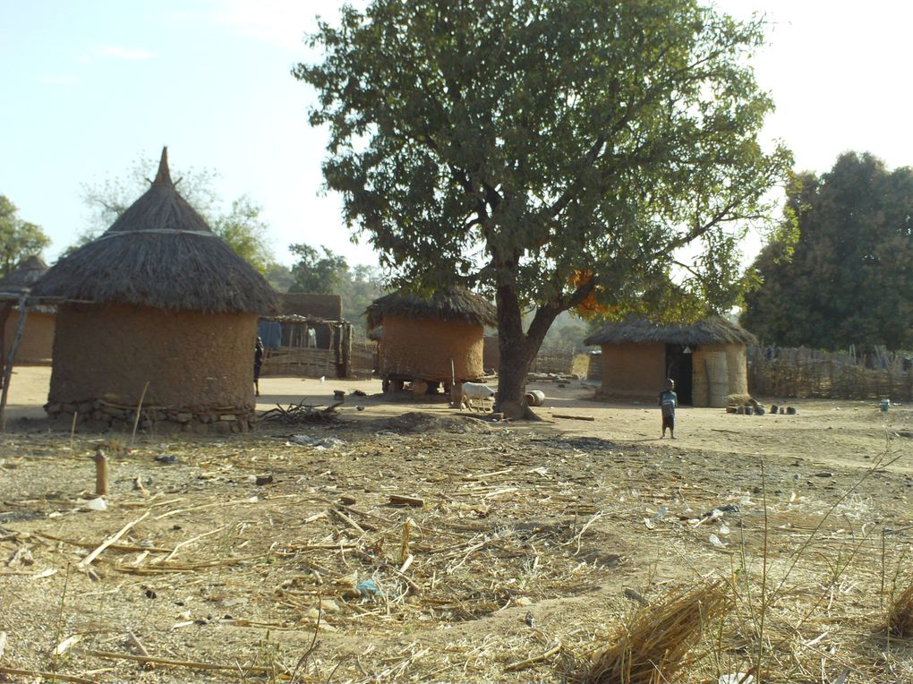Album - Village Barakaya Filabougou