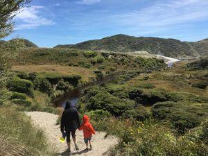 Coup de coeur pour Wharariki Beach ~ Nouvelle Zélande