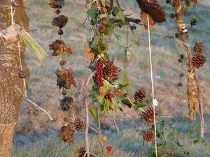 Collectifs ( Mandala  - Graff végétal - Mises en scène dans le paysage - Arbre à souhait )
