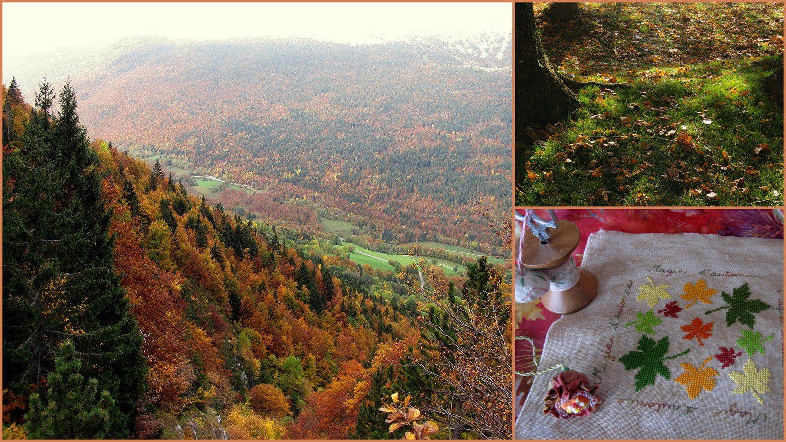 Pochon encore...automne toujours..