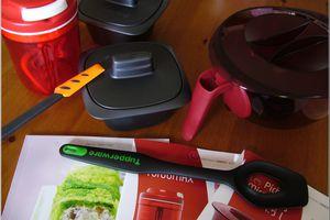 Une journée chez Tupperware pour le concours des terrines ! (28 octobre 2011)