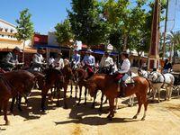 Fête du cheval de Jerez 2015 (1° partie)