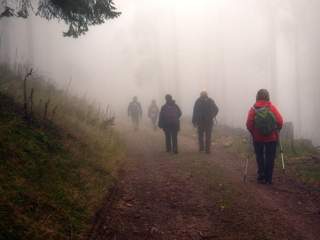 Après le soleil, le brouillard, deux façon de découvrir les environs d'Aubure. Sorties des 2 et 7 novembre 2011