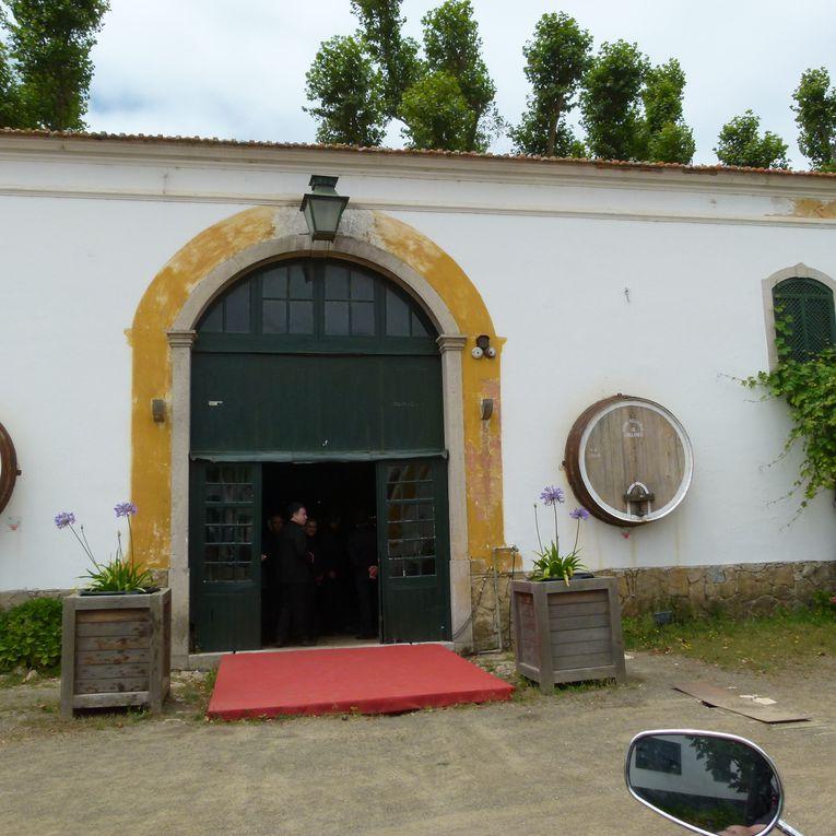 Album - sortie-Wine-and-Palaces