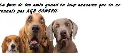 SECRETARIAT INDEPENDANT 78 ILE DE FRANCE