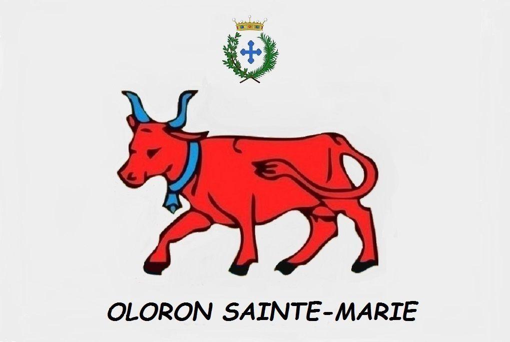 Conseil Municipal Oloron Sainte-Marie, le 30 juin 2021