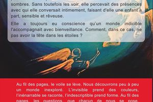 Le ciel communique, the book