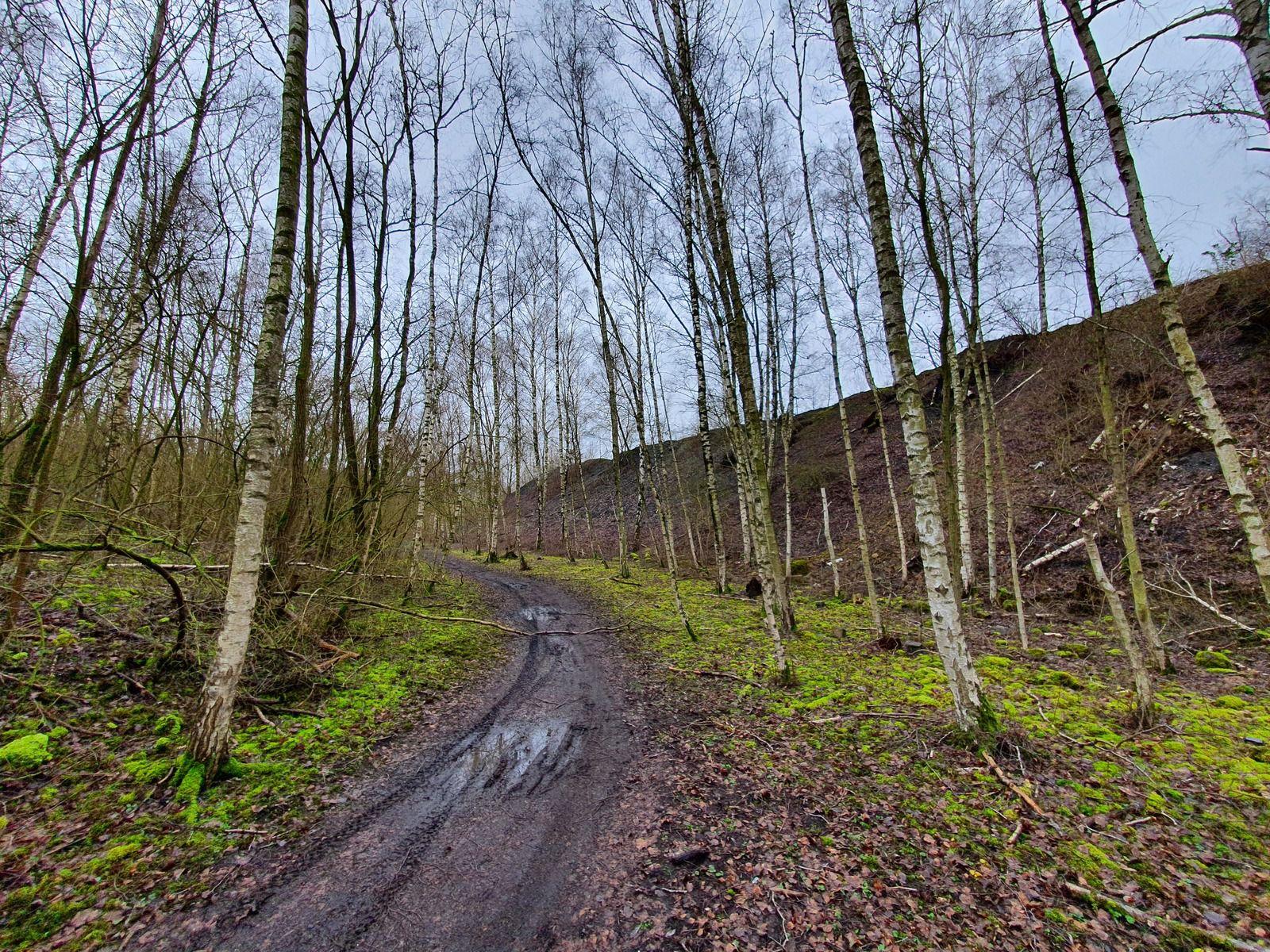 Parc de Nature et de Loisirs, le Marais, Wingles