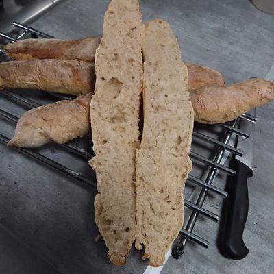 A la recherche de pain dur pour mes poulettes, alors je fais leurs baguettes