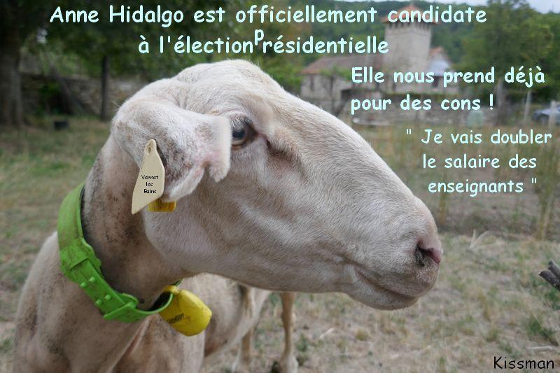 Anne Hidalgo dans l'élection présidentielle