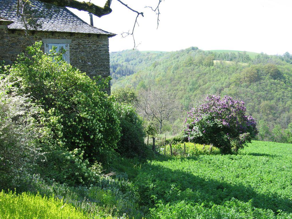 Chemin de Saint Jacques Conques->Decazeville, 20 Km.