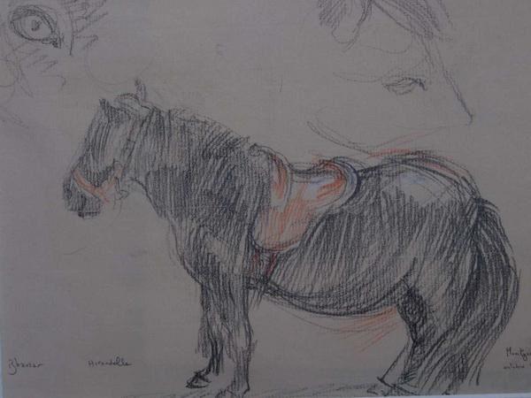 Croquis et dessins fruits de l'observation et de la rapidité d'éxécution,profitant de l'apprentissage d'Albertine au poney club.