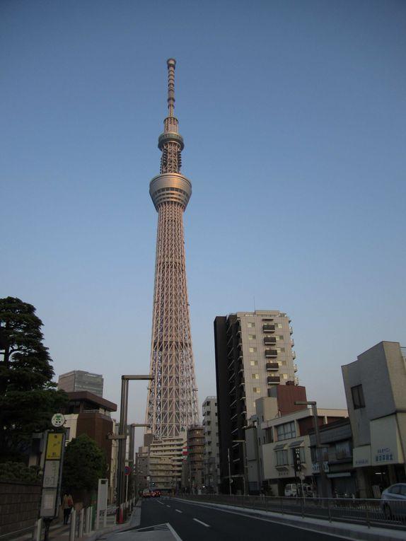 Album - Japon 2014